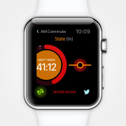 DELAID APPLE WATCH APP
